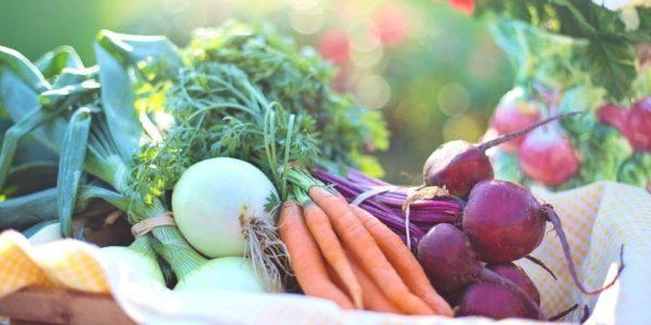 大人ニキビ改善におすすめの食べ物は「豚汁」